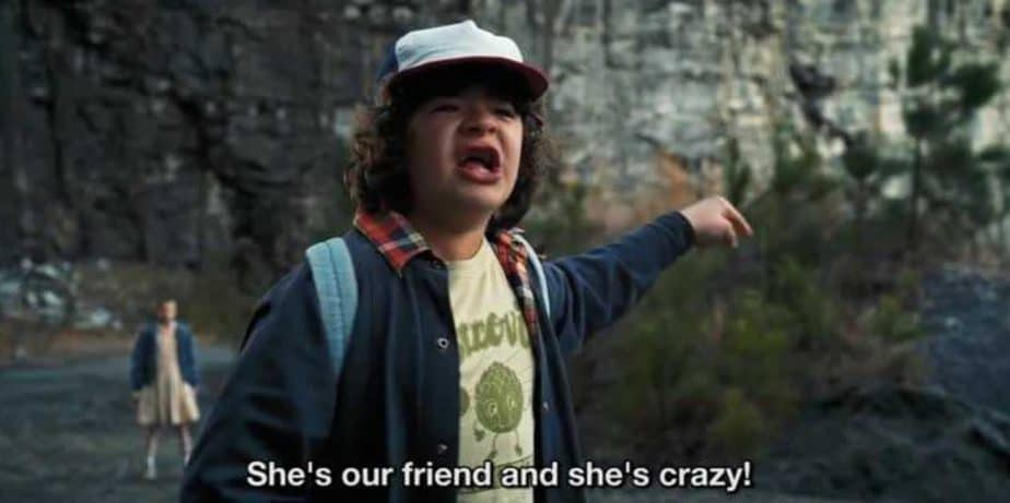 31 Dustin Henderson Quotes from Stranger Things